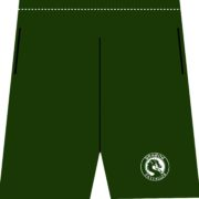 Forest Green Athletic Running Shorts Male